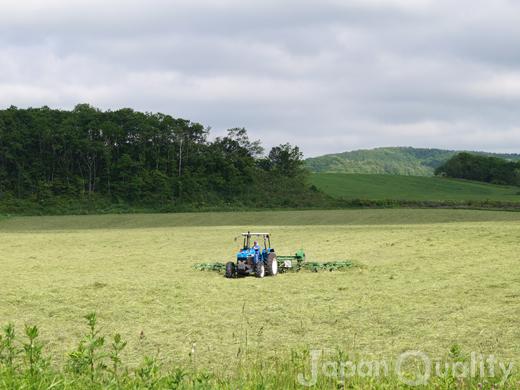 最初の牧草収穫は、その年の経営を左右する大一番【一番草】(いちばんそう、いちばんぐさ)