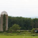 かつて飼料を発酵・貯蔵をしていた牧場のシンボル【タワーサイロ】