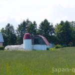 【知ってる?】農村で見かける二段勾配の屋根はギャンブレルという名前で、畜舎に適した構造になっていた